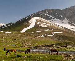 Travel Package Jammu