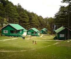 Honeymoon Tour To Jammu